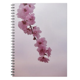 Cherry Blossom Flowers Note Book