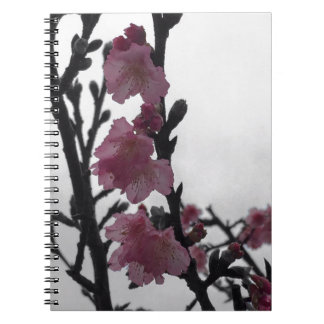 Cherry Blossom flowers Spiral Note Books