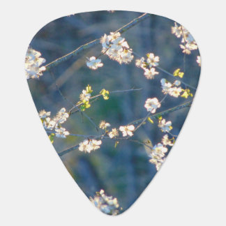 Cherry Blossom Guitar Pick