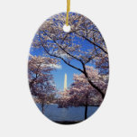 Cherry blossom in Washington DC Double-Sided Oval Ceramic Christmas Ornament