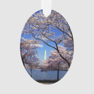 Cherry blossom in Washington DC Photo Ornament