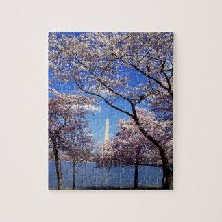 Cherry blossom in Washington DC Puzzles