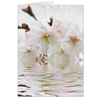 Cherry blossom in water card