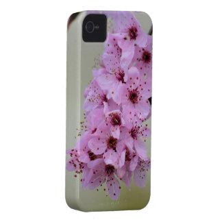 Cherry Blossom iPhone 4 Case-Mate Case