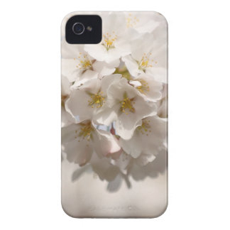 Cherry Blossom iPhone 4 Case-Mate Case