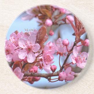 Cherry Blossom Japanese Coasters