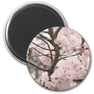 Cherry Blossom Magnet (round)