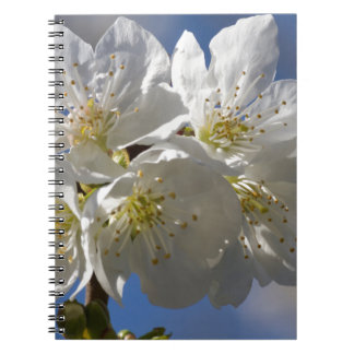cherry blossom note book