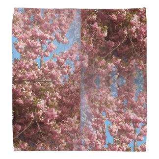 Cherry Blossom Photo on Bandana