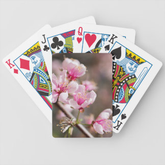 Cherry blossom playing cards - add your text!