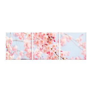 Cherry Blossom Rose Blue  Gallery Wrap Canvas