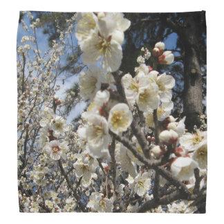 Cherry Blossom / Sakura / サクラ(桜) Bandanna