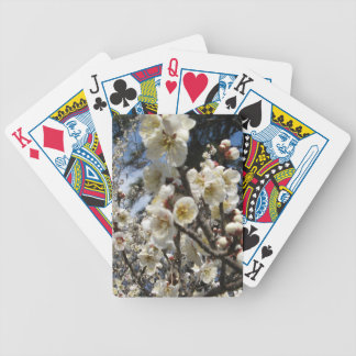 Cherry Blossom / Sakura / サクラ(桜) Bicycle Playing Cards