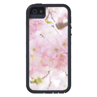 Cherry Blossom Sakura iPhone 5 Case