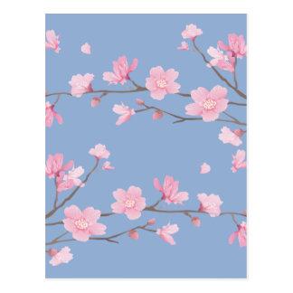 Cherry Blossom - Serenity Blue Postcard