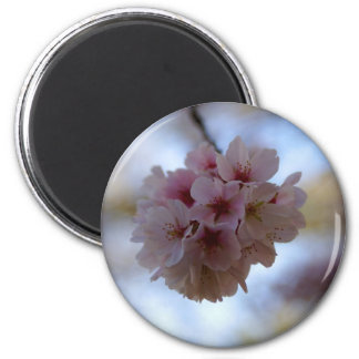 Cherry Blossom Time 2 Inch Round Magnet