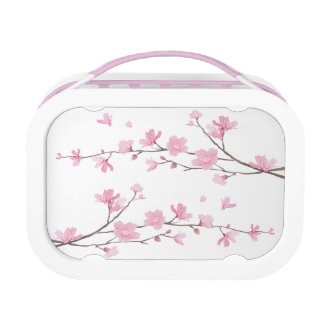Cherry Blossom - Transparent Background Lunch Box