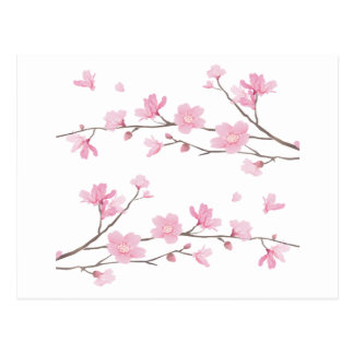 Cherry Blossom - Transparent-Background Postcard