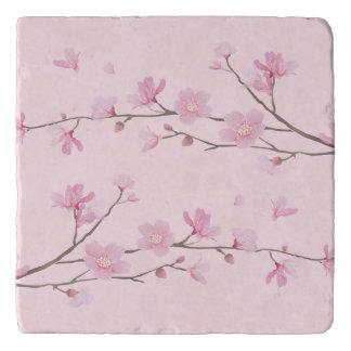 Cherry Blossom - Transparent Background Trivet