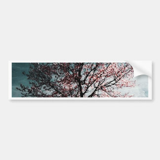 Cherry Blossom Tree Painting - Dusk Bumper Sticker