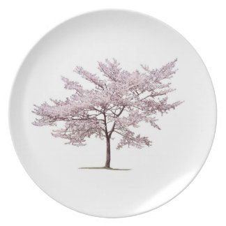 Cherry Blossom Tree Party Plate