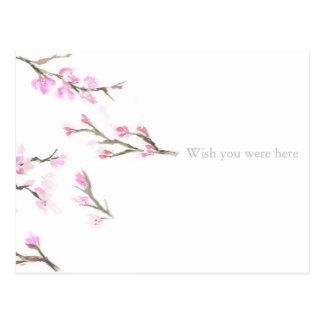 "Cherry Blossom ""Wish You Were Here"" Postcard"