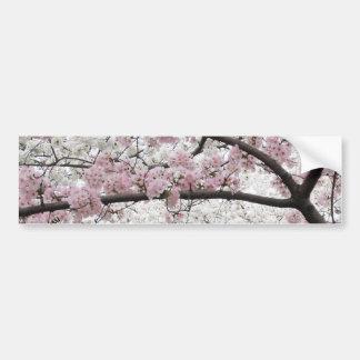 Cherry Blossoms 10 Bumper Sticker