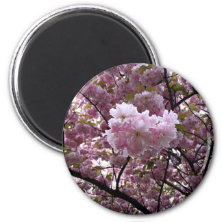 Cherry Blossoms 2 Inch Round Magnet