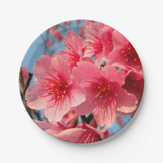 Cherry Blossoms 7 Inch Paper Plate