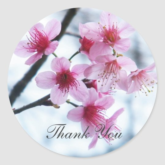 Cherry Blossoms - A Classic Round Sticker