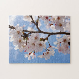 Cherry blossoms and light-blue sky jigsaw puzzle