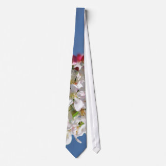Cherry Blossoms and meaning Tie