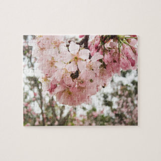 Cherry Blossoms and the Bee - Puzzles