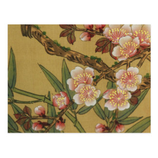 Cherry Blossoms Asian Japanese Art Postcard