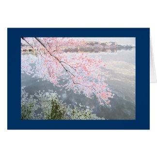 Cherry Blossoms at Tidal Basin, Washington DC-3 Card