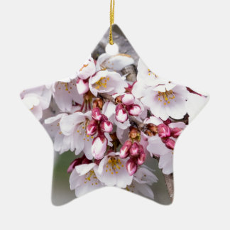 Cherry Blossoms Ceramic Star Ornament