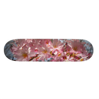 Cherry Blossoms Deck Skate Board