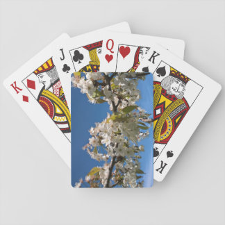 Cherry blossoms floral spring photo playing cards