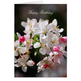 Cherry blossoms happy birthday card