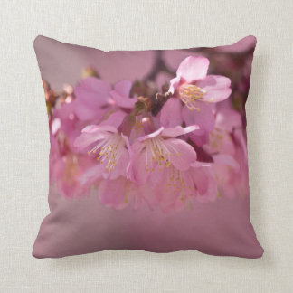 Cherry Blossoms Hot Spring  2012 Throw Pillow