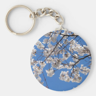 Cherry Blossoms in Washington DC Basic Round Button Keychain