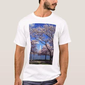 Cherry Blossoms in Washington DC Men's T-shirt