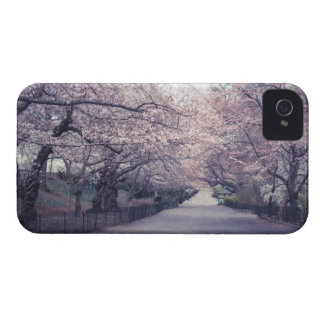 Cherry Blossoms iPhone 4 Case-Mate Case