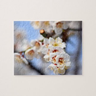 Cherry Blossoms Jigsaw Puzzle