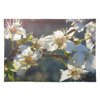 Cherry Blossoms Placemat