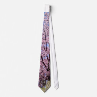 Cherry blossoms tie
