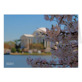 Cherry Blossoms Washington DC Card