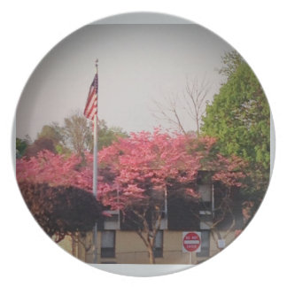 Cherry Blossoms with American Flag Party Plate