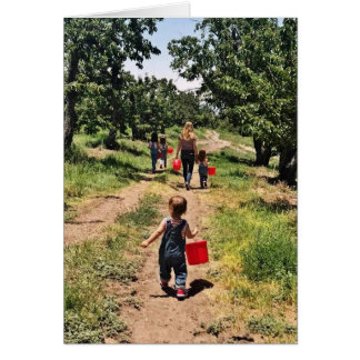 Cherry Picking Time Card