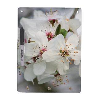 Cherry Sakura Blossom Dry Erase Board
